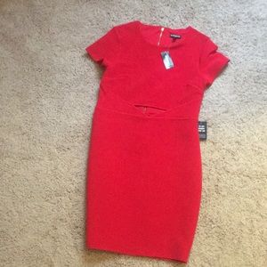 Red bodycon dress. Brand new with tags.